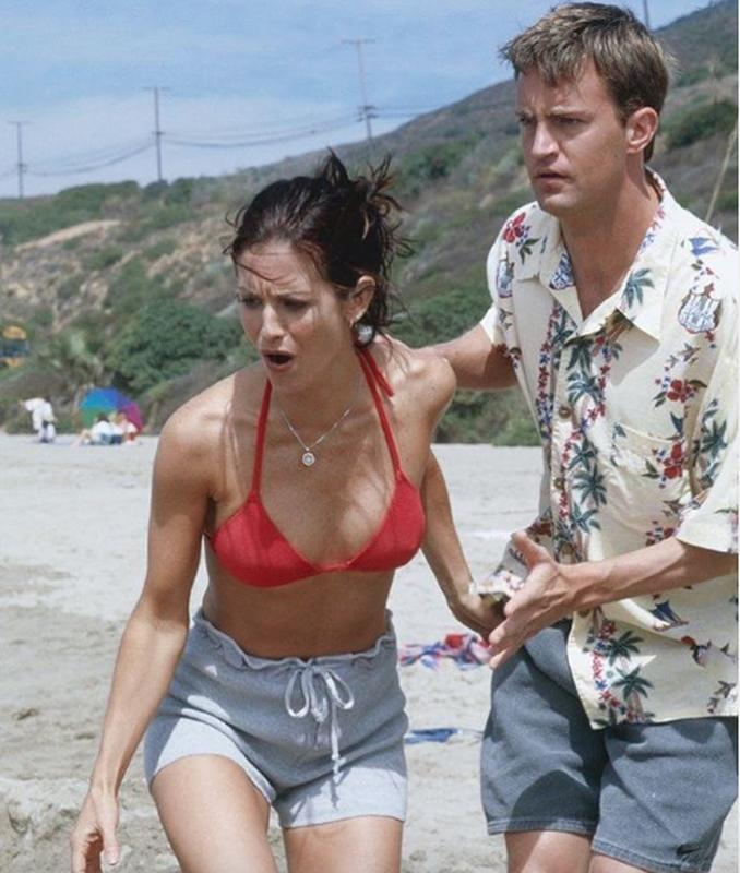 Chandler And Monica In The One With The Jellyfish